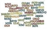 Омонимы испанского языка